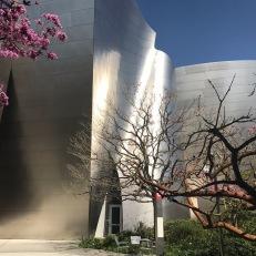 © 2017 Paola Rojas Walt Disney Concert Hall in Los Angeles